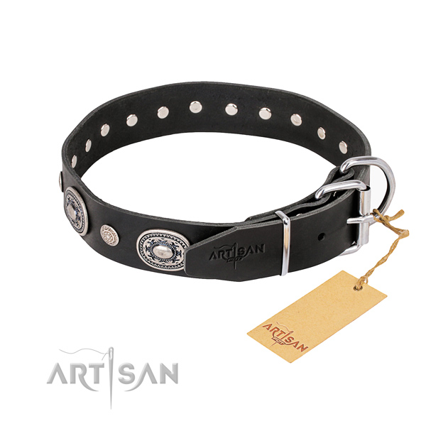 High quality genuine leather dog collar handmade for everyday use