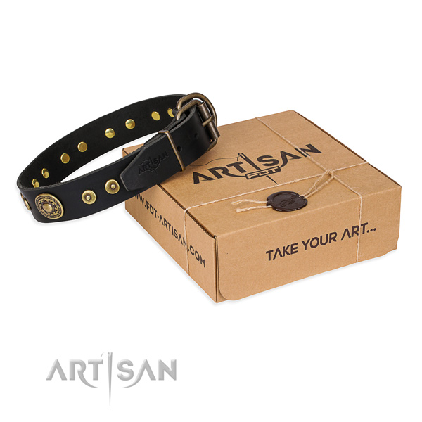 Full grain natural leather dog collar made of top notch material with rust-proof hardware
