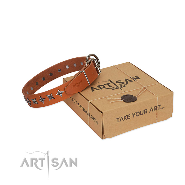 Everyday use dog collar of high quality natural leather with adornments