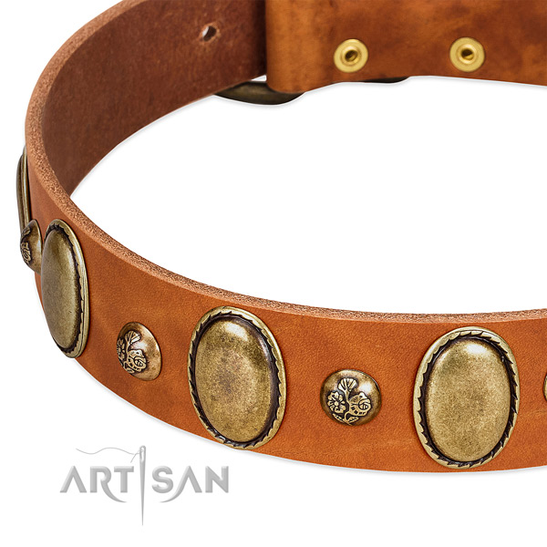Full grain genuine leather dog collar with unusual decorations