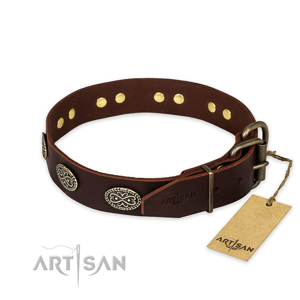 Corrosion proof fittings on leather collar for your attractive four-legged friend