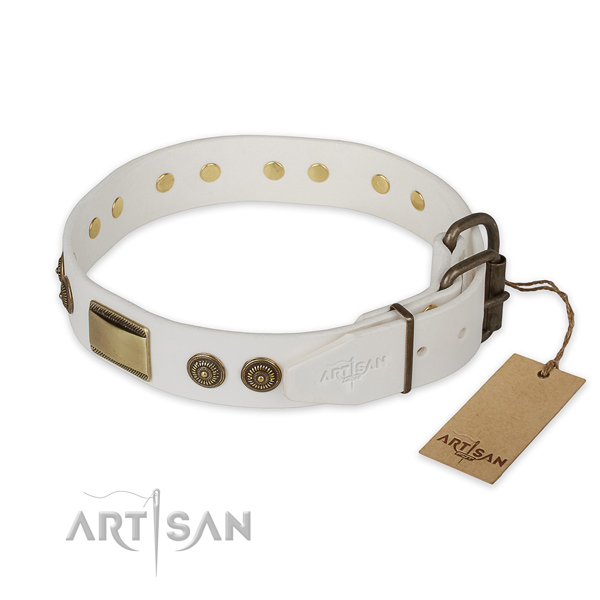 Strong D-ring on genuine leather collar for basic training your doggie