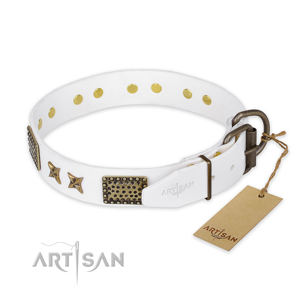 Rust-proof hardware on leather collar for your beautiful pet