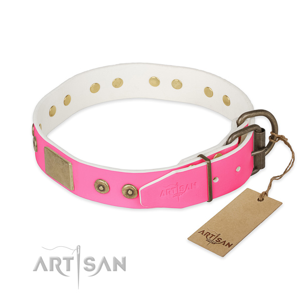 Reliable studs on everyday use dog collar