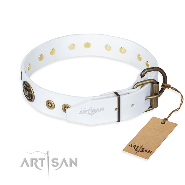 Genuine leather dog collar made of gentle to touch material with strong embellishments