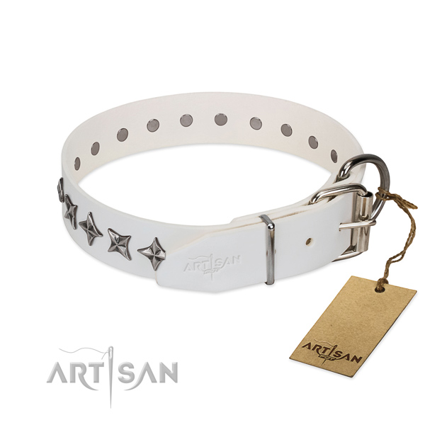 Comfy wearing adorned dog collar of strong natural leather