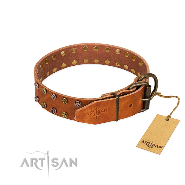 Stylish walking full grain natural leather dog collar with impressive studs
