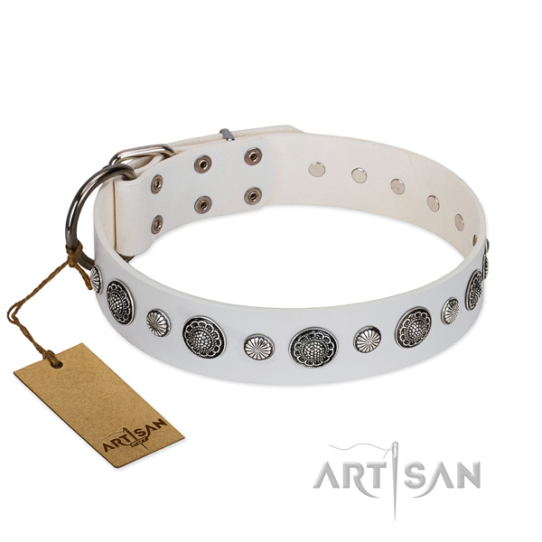 Top notch leather dog collar with corrosion proof D-ring