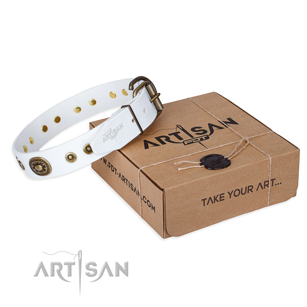 Full grain natural leather dog collar made of best quality material with durable buckle