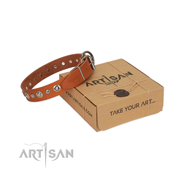 Fine quality full grain natural leather dog collar with trendy adornments