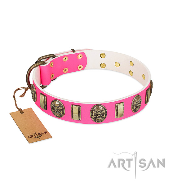 Rust resistant studs on full grain natural leather dog collar for your pet