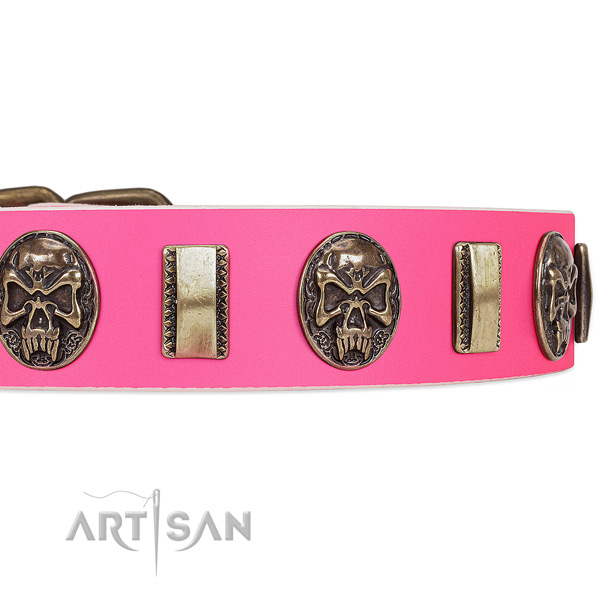 Durable decorations on leather dog collar for your canine
