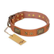 """Cosmic Traveller"" FDT Artisan Adorned Leather English Bull Terrier Collar with Old Bronze-Plated Stars and Plates"