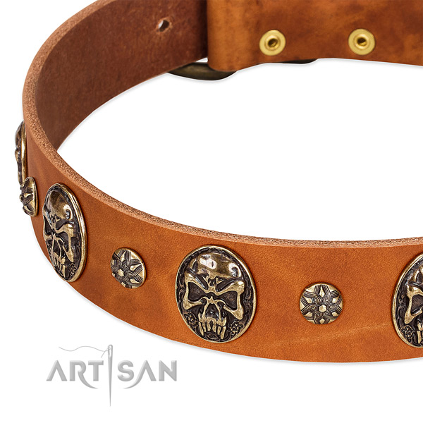 Rust resistant D-ring on leather dog collar for your doggie