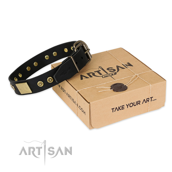 Rust resistant traditional buckle on full grain leather dog collar for handy use