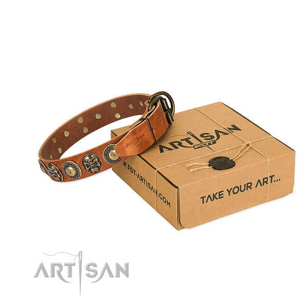 Reliable adornments on dog collar for stylish walking