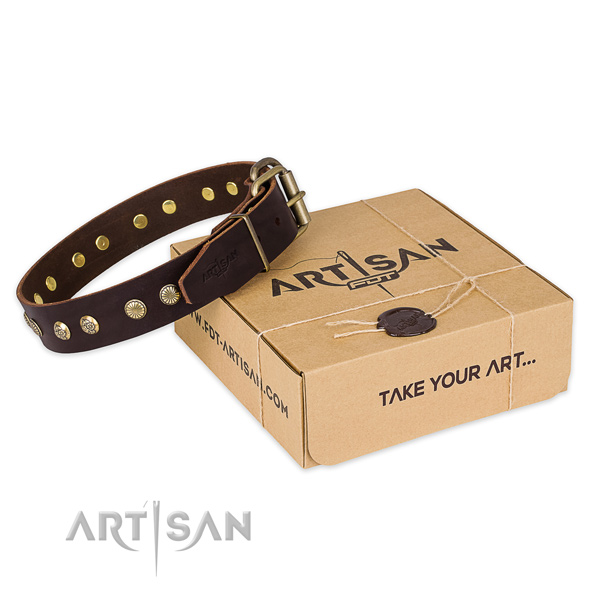 Corrosion proof traditional buckle on natural genuine leather collar for your beautiful four-legged friend