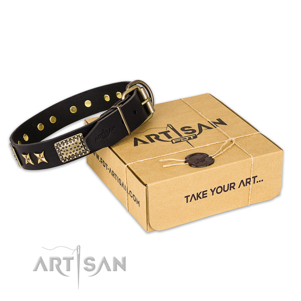 Durable fittings on full grain genuine leather collar for your stylish doggie