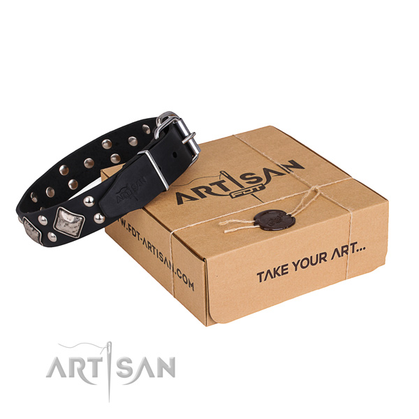 Daily use dog collar with Inimitable durable embellishments