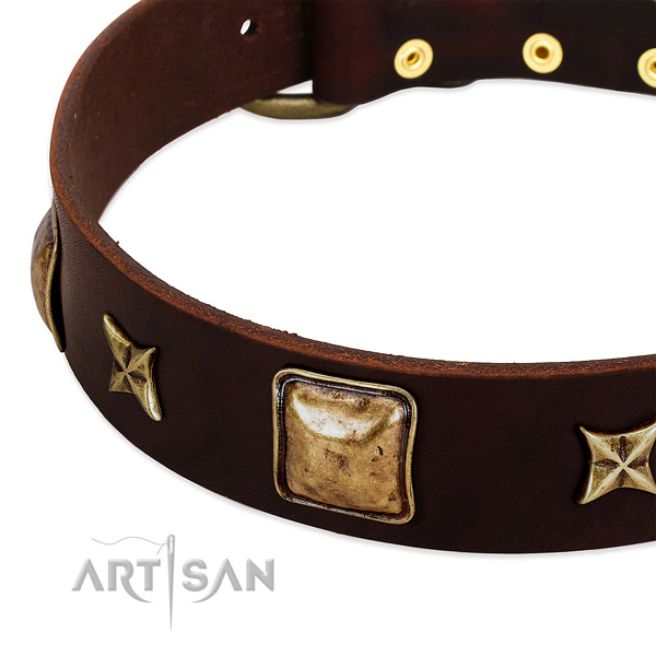 Durable buckle on genuine leather dog collar for your dog