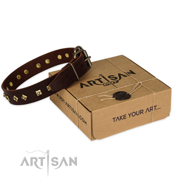 Reliable buckle on genuine leather dog collar for basic training