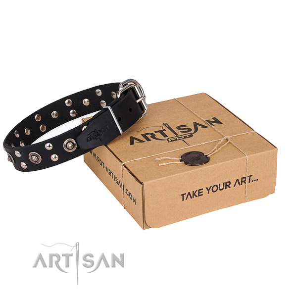 Daily walking dog collar with Unique rust resistant decorations