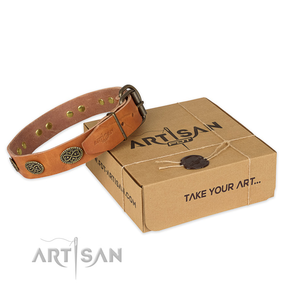 Rust resistant D-ring on full grain natural leather collar for your attractive dog