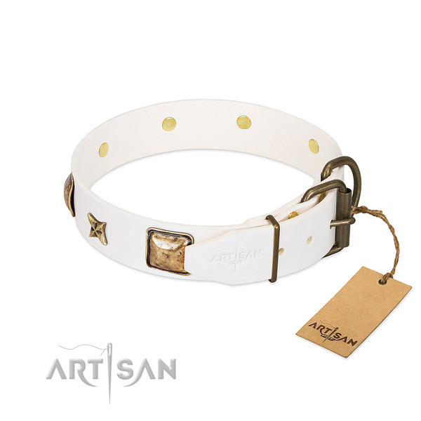 Genuine leather dog collar with durable D-ring and adornments