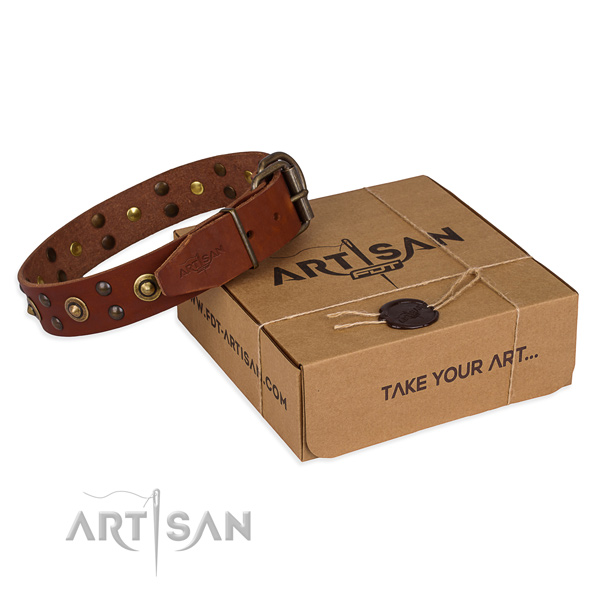 Corrosion proof fittings on full grain natural leather collar for your handsome dog