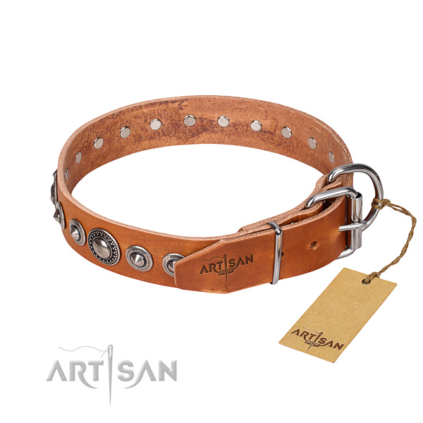 Full grain natural leather dog collar made of quality material with reliable embellishments