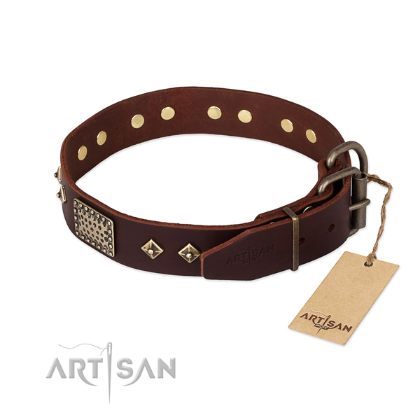 Full grain genuine leather dog collar with corrosion proof fittings and embellishments