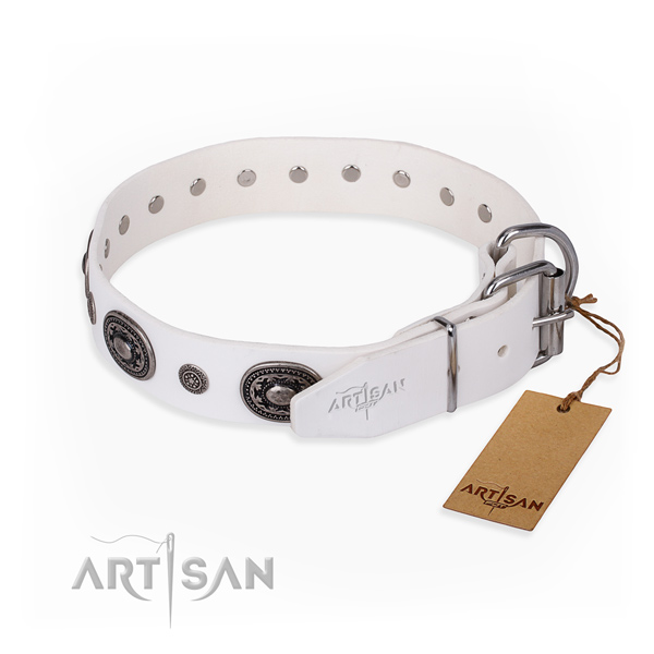 High quality genuine leather dog collar handmade for comfy wearing