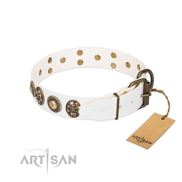 Durable decorations on everyday use dog collar