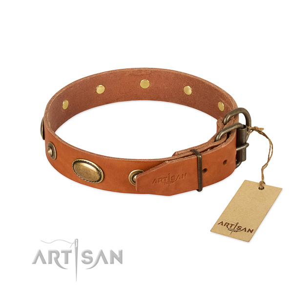 Durable adornments on full grain natural leather dog collar for your doggie