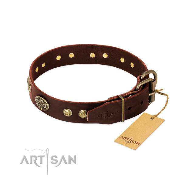Reliable adornments on full grain leather dog collar for your canine