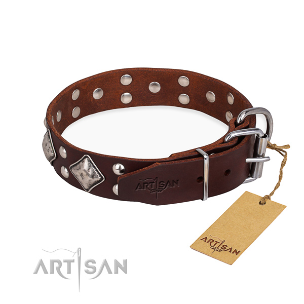 Full grain natural leather dog collar with exceptional strong adornments