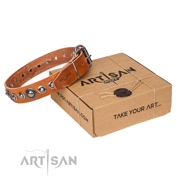 Full grain leather dog collar made of reliable material with corrosion resistant hardware