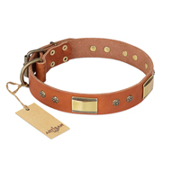 """Enchanting Spectacle"" FDT Artisan Tan Leather English Bull Terrier Collar with Old Bronze Look Plates and Round Studs"