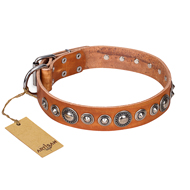 """Daily Chic"" FDT Artisan Tan Leather English Bull Terrier Collar with Decorations"