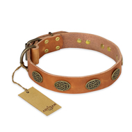 """Magic Amulet"" FDT Artisan Tan Leather English Bull Terrier Collar with Oval Studs"