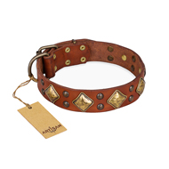 """Flight of Fancy"" FDT Artisan Adorned Leather English Bull Terrier Collar"
