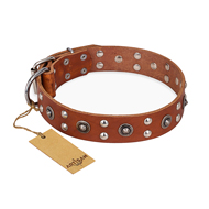 """Silver Elegance"" FDT Artisan Decorated Leather English Bull Terrier Collar with Old Silver-Like Plated Studs and Cones"
