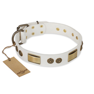 """Golden Avalanche"" FDT Artisan White Leather English Bull Terrier Collar with Old Bronze Look Plates and Circles"