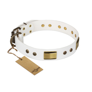 """Precious Necklace"" FDT Artisan White Leather English Bull Terrier Collar with Old Bronze Look Plates and Studs"