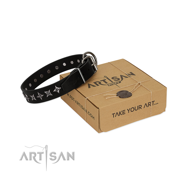 Everyday use dog collar of finest quality full grain genuine leather with embellishments
