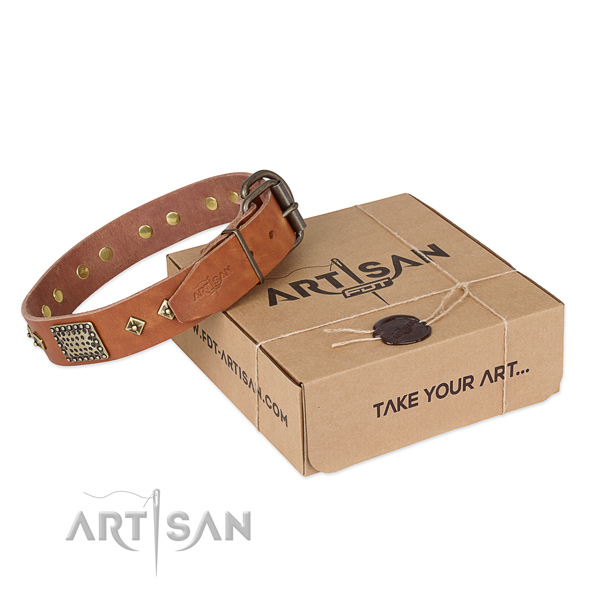 Handmade leather collar for your impressive canine