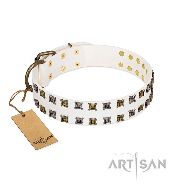 Gentle to touch full grain genuine leather dog collar with studs for your four-legged friend