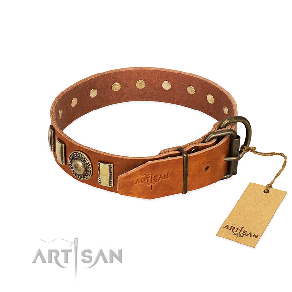 Embellished genuine leather dog collar with reliable traditional buckle