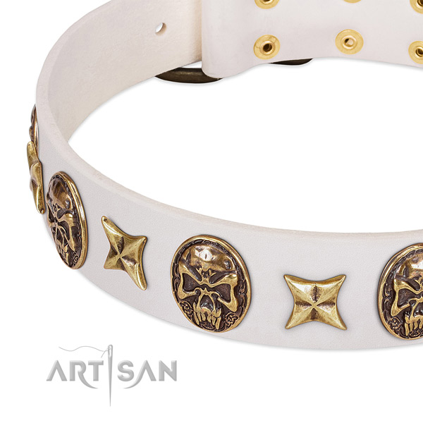 Handcrafted dog collar handcrafted for your attractive doggie