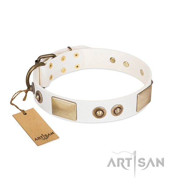 Rust-proof buckle on natural genuine leather dog collar for your four-legged friend